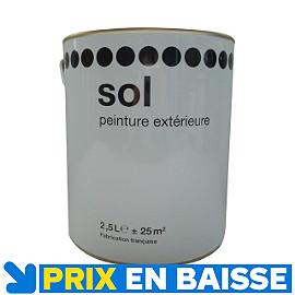 Peinture sp cial sol gris 1er prix 2 5l castorama for Peinture tollens special sol